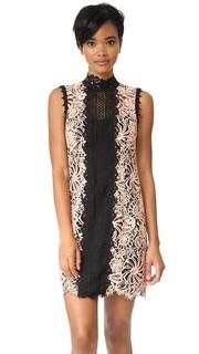 Свободное платье Paramour Nanette Lepore
