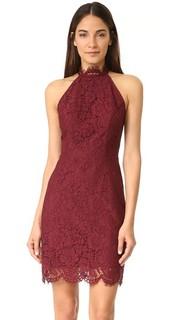 Кружевное платье Cara с высокой горловиной BB Dakota