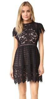 Кружевное платье Mix с короткими рукавами Rebecca Taylor