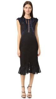 Кружевное платье Vien без рукавов Rebecca Taylor