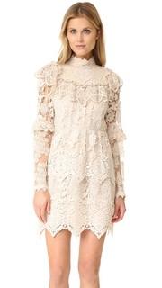 Романтичное кружевное платье Anna Sui