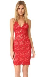 Классическое кружевное платье-комбинация Nightcap x Carisa Rene