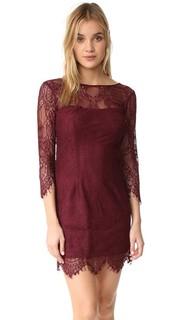 Кружевное платье Everton с V-образным вырезом на спине BB Dakota