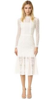 Кружевное платье Desdemona Temperley London