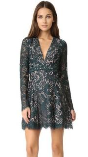 Кружевное платье Davis Stylestalker