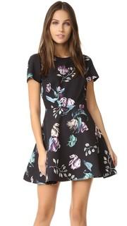 Платье с цветочным рисунком Neve Stylestalker