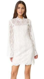 Кружевное мини-платье Uptown Keepsake
