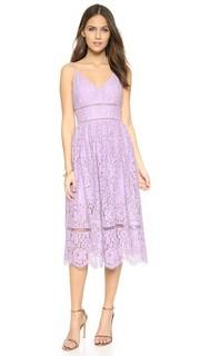 Кружевное платье Tea Cynthia Rowley