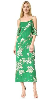 Шелковое платье Stella с декоративной отделкой Rachel Zoe