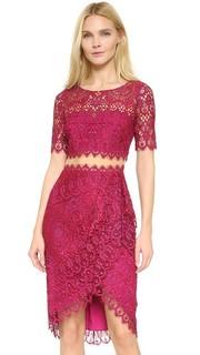 Кружевное коктейльное платье с короткими рукавами Marchesa Notte