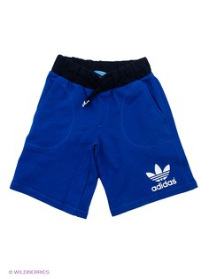 Шорты Adidas