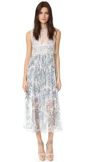 Кружевное платье Adorn Zimmermann