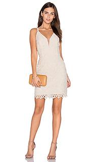 Кружевное платье olivia - Greylin