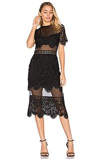 Кружевное платье soho - Karina Grimaldi