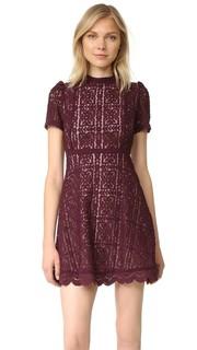 Кружевное платье Adelina с воротником под горло BB Dakota