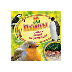 Птицы, Самая первая энциклопедия Росмэн