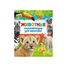 """Энциклопедия для малышей """"Животные"""" Росмэн"""