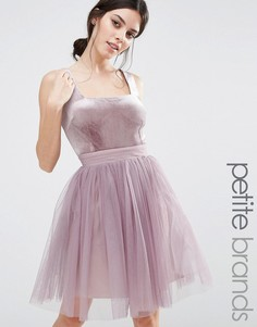Короткое приталенное платье с юбкой из тюля Little Mistress Petite - Фиолетовый