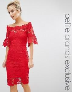 Кружевное платье-футляр с широкой горловиной Paper Dolls Petite - Красный
