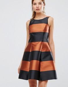 Платье в бронзовую полоску Coast Milliana - Мульти