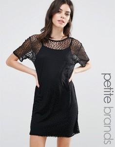 Сетчатое платье-футболка в горошек Boohoo Petite - Черный