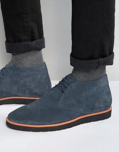Синие замшевые ботинки чукка Dune - Синий