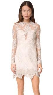 Кружевное платье Leondra Saylor