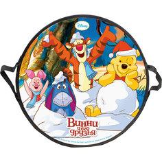 """Ледянка """"Винни-Пух"""", 52 см, круглая, Disney"""