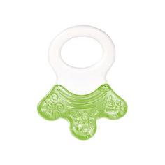 Прорезыватель водный с погремушкой - Лапка, 0+, Canpol Babies, зеленый