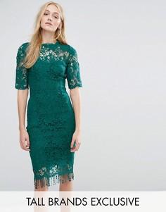 Кружевное платье с контрастной подкладкой и кисточками по краю Paper Dolls Tall - Зеленый