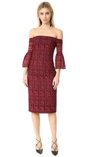 Облегающее платье с открытыми плечами из кружева в полоску с цветочным рисунком Cynthia Rowley
