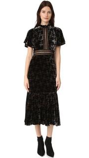 Бархатное платье Shadow с цветочным рисунком Rebecca Taylor