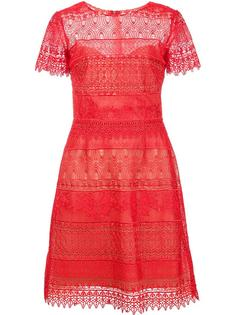 embroidered dress Marchesa Notte