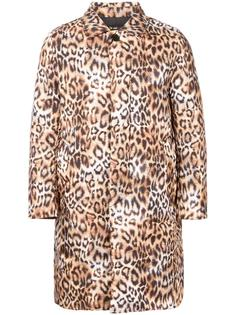 animal print padded coat DressCamp
