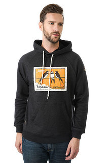 Толстовка кенгуру Запорожец Птицы Anthracite