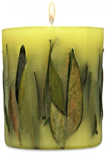 Цилиндрическая свеча с ароматом чая Acqua di Parma