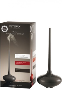 Электрический диффузор «Произведение искусства», серый Esteban