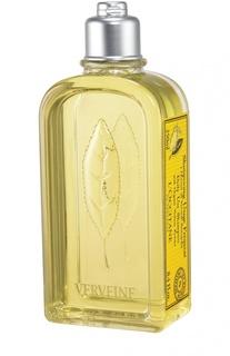 Шампунь Вербена для частого применения L`Occitane