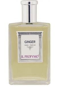 Парфюмерная вода Ginger Il Profvmo
