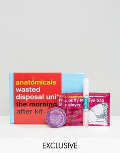 Набор The Morning After Anatomicals эксклюзивно для ASOS - СКИДКА 25 - Бесцветный