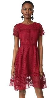 Кружевное расклешенное платье Mori Cupcakes and Cashmere
