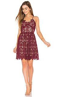 Fit and flare lace dress - J.O.A.