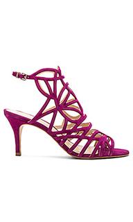 Туфли на каблуке pelena - Vince Camuto