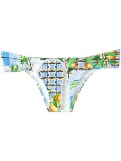 printed bikini bottom Blue Man