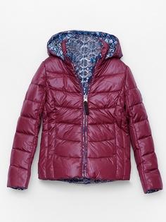 Куртки Brinco
