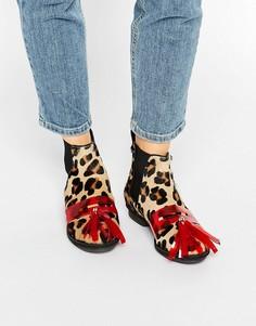 Ботинки челси с леопардовым принтом House of Holland - Мульти