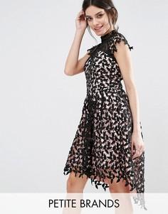 Кружевное платье для выпускного с асимметричным краем Chi Chi London Petite - Черный