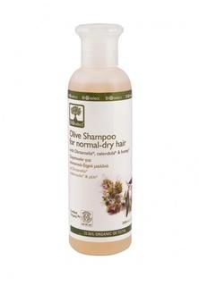 Шампунь для нормальных и сухих волос BIOselect