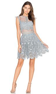 Кружевное мини-платье manhattan - Karina Grimaldi