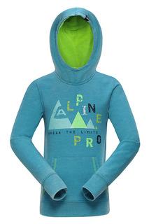 Толстовка Alpine Pro